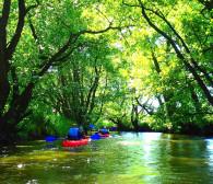 Reda - rzeka o zróżnicowanym krajobrazie