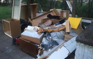 Tygodnie mijały, a sterta śmieci rosła. Zniknęła po naszej interwencji
