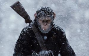 """Udane zamknięcie trylogii. Recenzja filmu """"Wojna o planetę małp"""""""