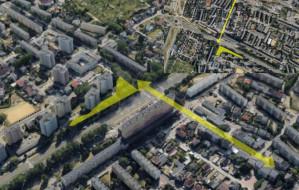 Pomysły na więcej zieleni w Gdyni