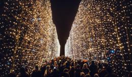 Tysiące światełek znów rozbłysną w parku Oliwskim