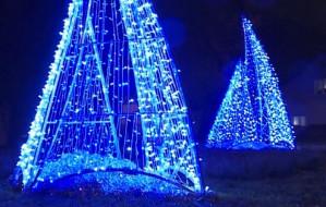 Iluminacje świąteczne rozbłysły w dzielnicach Gdyni