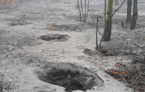 Nielegalne wydobycie bursztynu na Stogach kwitnie