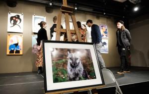Artyści dla zwierząt. Niecodzienna aukcja w Oliwskim Ratuszu Kultury