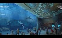 Mniej niż 40 zł za bilet do oceanarium w...