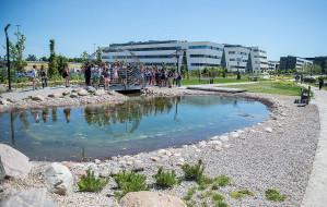 UG otworzył park z zagrożoną roślinnością. Miejsce dla biologów i mieszkańców
