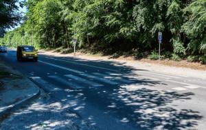Powolne zmiany na niebezpiecznym przejściu przy schronisku