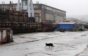 Gdynia: biurowce w miejsce stoczni
