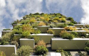 Architekt: zielone Trójmiasto? To możliwe