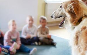 Czworonożny terapeuta dla dziecka