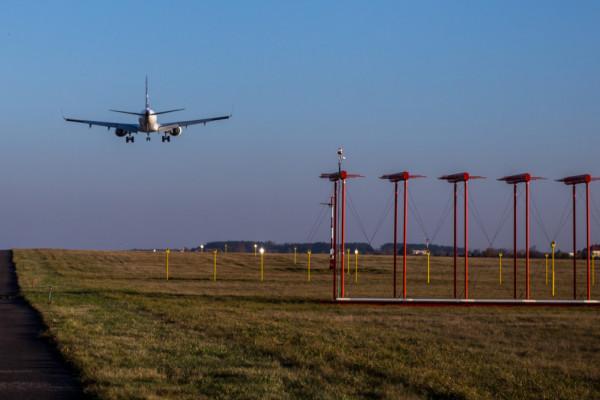 Ptaki wyłączyły ILS na lotnisku w Gdańsku
