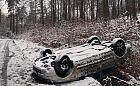 Wraki aut w trójmiejskich lasach