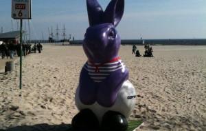 Pomaluj zająca z gdyńskiej plaży