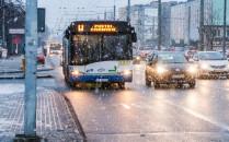 Najważniejsze buspasy w Gdyni