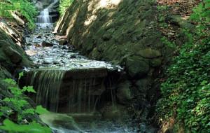 Potok Wiczliński popłynie przez Gdynię