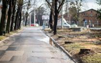 Wycinka drzew przy Parku Oliwskim