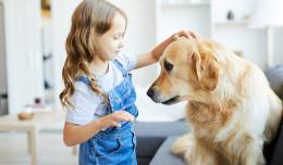 Zajęcia edukacyjne dla dzieci z udziałem psa