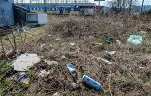 Uporządkują teren przy stacji SKM Cisowa