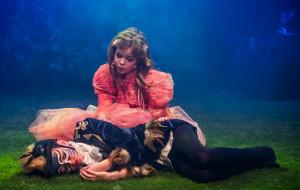 Barwne przygody Calineczki na 5-lecie Teatru Baabus Musicalis
