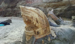 Nowe tajemnicze rzeźby na plaży w Babich Dołach