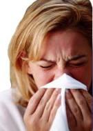 Wakacje alergika