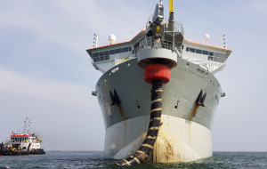 Gigantyczne pogłębiarki na Zatoce. Trwa poszerzanie plaż w Gdańsku