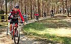 Park Narodowy Bory Tucholskie, rodzinnie na rowerze