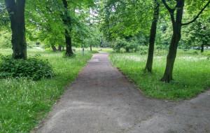 Park Steffensów bardziej przyjazny dla mieszkańców. Czas na zmiany