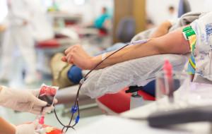 Oddają krew, by ratować życie. Co dostają w zamian?