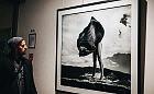 Szymon Brodziak, mistrz czarno-białej fotografii. Po wernisażu w PGS