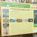 Rodzinna wędrówka. Rezerwat Przyrody Mewia Łacha