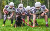 Psy i sportowcy. Charytatywny kalendarz z...