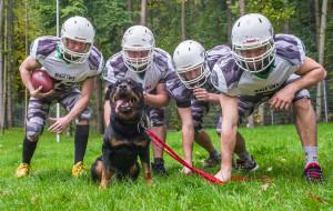 Psy i sportowcy. Charytatywny kalendarz z Sopotkowa
