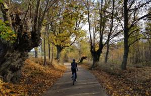 Propozycja trasy rowerowej śladem rzeki Raduni