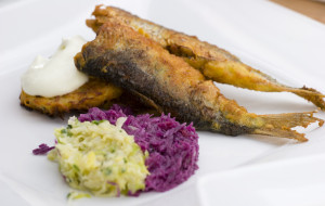 Tradycyjne smaki Pomorza: śledź