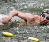 Pływali w grudniu w Motławie. Mistrzostwa Europy morsów