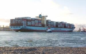 Port Gdynia. Więcej kontenerów, mniej węgla
