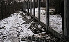 Żydowski cmentarz zniszczony