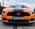 Rzetelny skup aut i import z USA