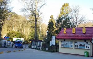 Gdańskie zoo zamknięte do odwołania