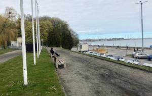 Skwer Arki Gdynia będzie upiększany