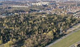 Gdańsk planuje rozbudowę pięciu cmentarzy