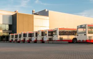 Autobusy nie mieszczą się w zajezdni, więc stoją przy Amber Expo