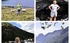 Piechotą przez wybrzeże. Barbara Grobelna pokona 400 km dla schroniska dla koni