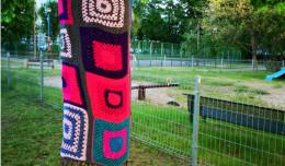 Żabianka: tajemnicze swetry na drzewach