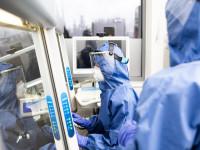 Leczenie niepłodności i in vitro znów możliwe. Są nowe wytyczne