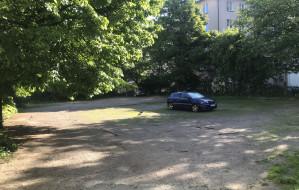 Park zamiast parkingu w centrum Gdyni
