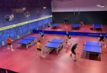 AZS AWFiS Balta Gdańsk skompletował polski skład tenisistów stołowych