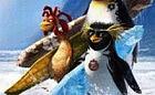 Pingwiny pływające na kawałku lodu
