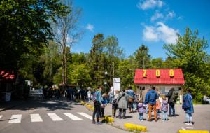 Połączenie z Gdyni do zoo zawieszone
